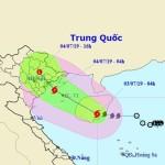 Công điện của Chủ tịch UBND huyện Nam Trực về việc triển khai các biện pháp ứng phó bão số 2
